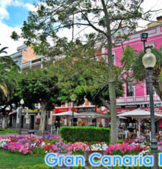 Things to do in Parque Santa Catalina